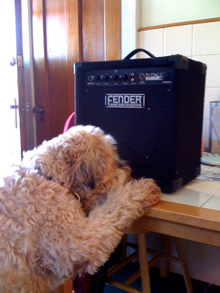 hermastersvoice.jpg - click to view - mousewheel to zoom